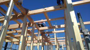本物の大工さんが建てる家:新井